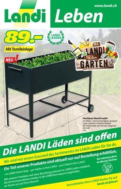 Angebote von Baumärkte & Gartencenter im Landi Prospekt ( 7 Tage übrig )