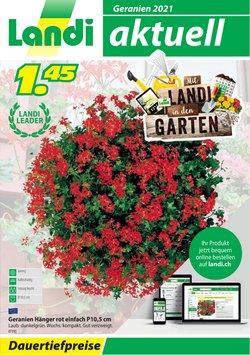 Angebote vonBaumärkte & Gartencenter im Landi Prospekt ( Mehr als 30 Tage)