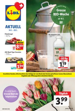 Lidl Katalog in Bern ( 3 Tage übrig )