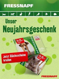 Fressnapf Katalog in Bern ( 13 Tage übrig )