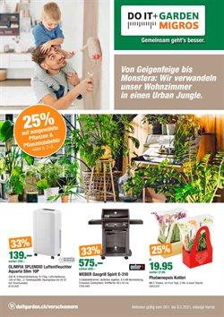 Angebote von Baumärkte & Gartencenter im Do it + Garden Prospekt in Zürich ( 13 Tage übrig )