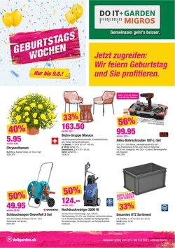 Angebote vonBaumärkte & Gartencenter im Do it + Garden Prospekt ( 11 Tage übrig)