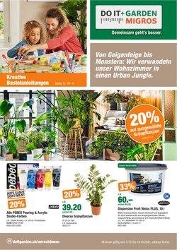 Angebote vonBaumärkte & Gartencenter im Do it + Garden Prospekt ( 2 Tage übrig)