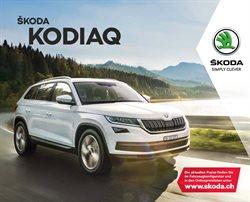 Angebote von Auto, Motorrad & Werkstatt im Skoda Prospekt in Altdorf ( Mehr als 30 Tage )