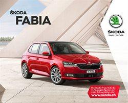 Škoda Katalog ( Mehr als 30 Tage )
