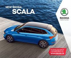 Angebote von Auto, Motorrad & Werkstatt im Škoda Prospekt in Basel ( Mehr als 30 Tage )