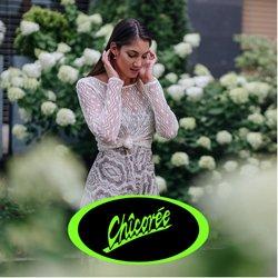 Angebote vonChicoree im Chicoree Prospekt ( 25 Tage übrig)
