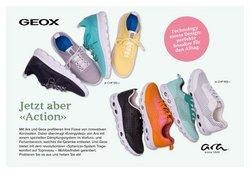 Angebote von Sneaker in Walder