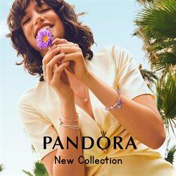 Pandora Katalog ( 22 Tage übrig )