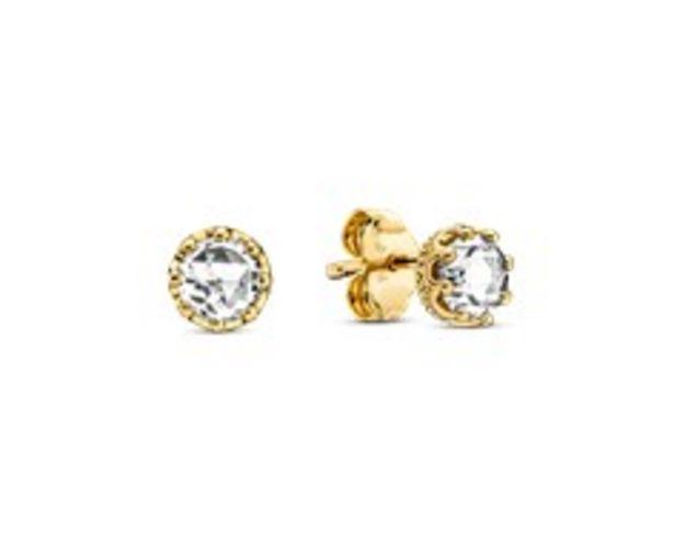 Klare Funkelnde Krone Ohrringe für €89