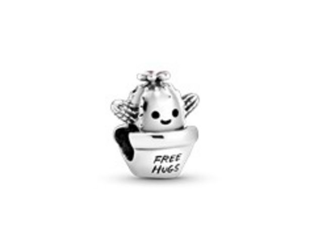 """Free Hugs"" Kaktus Charm für €45"